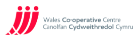 ELITE Supported Employment Wales Co-operative Centre